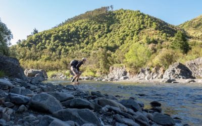 Fly Fishing New Zealand South Island